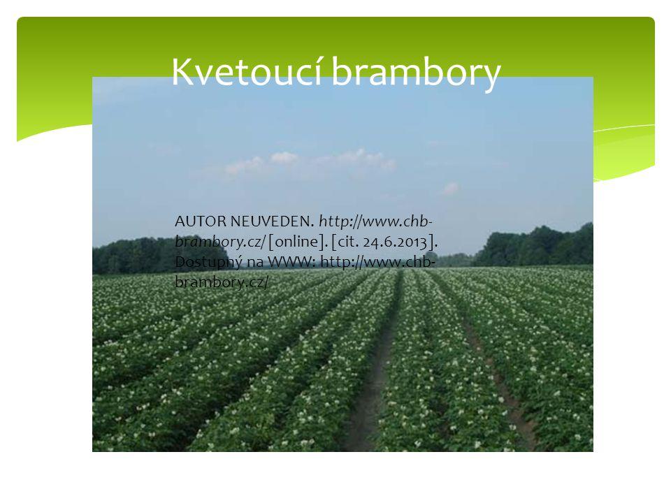 Kvetoucí brambory AUTOR NEUVEDEN. http://www.chb-brambory.cz/ [online].